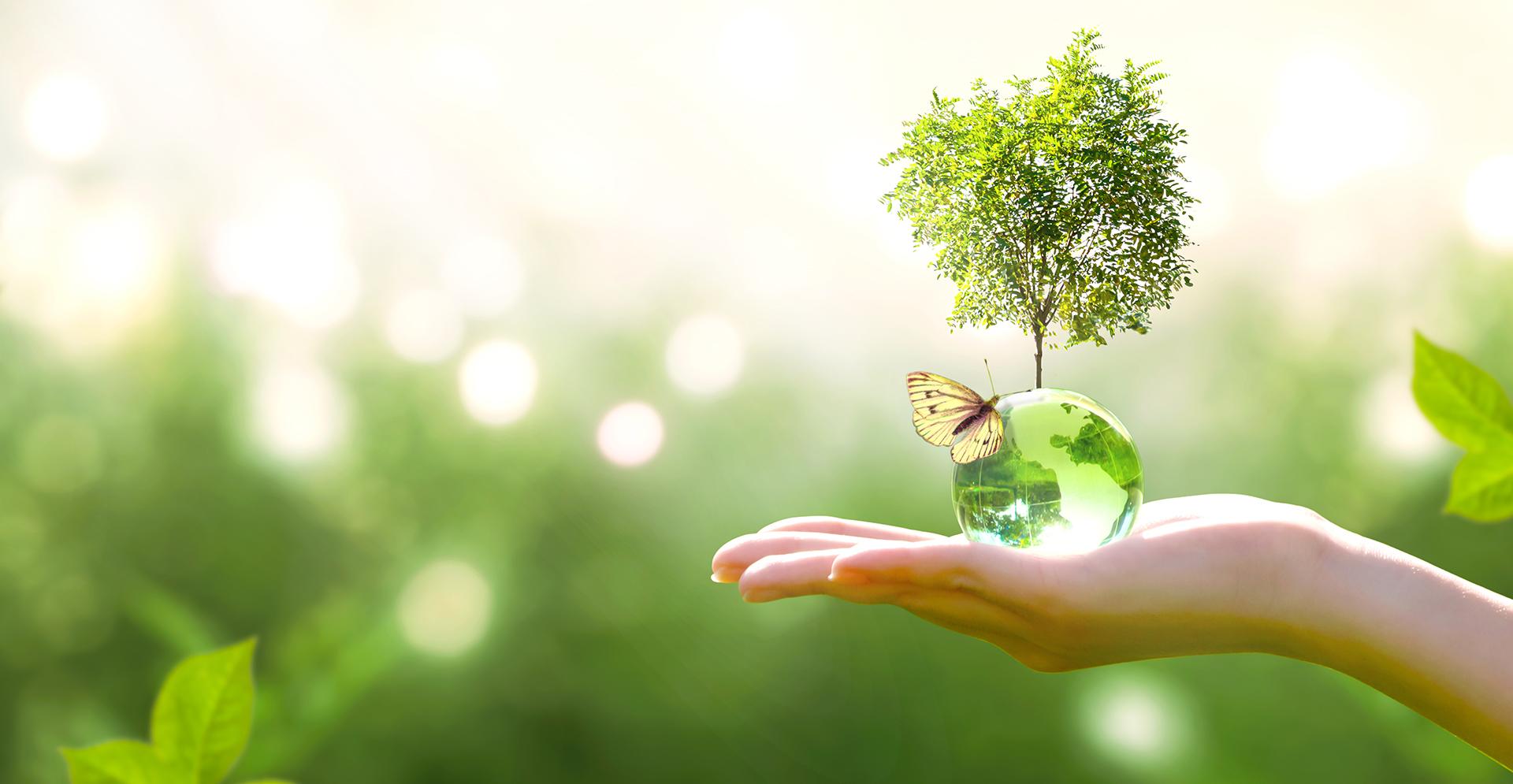 Lasipallosta 'kasvaa' puu-asetelma ja perhonen ihmisen kädessä